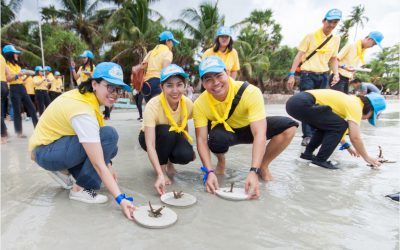 Sep 21, 2019 Siam Bioscience Group care for the environment by helping to grow and preserve coral reef, mangrove forest, and sea creatures.